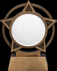 Click this Image to visit the Volleyball Trophy Awards category.